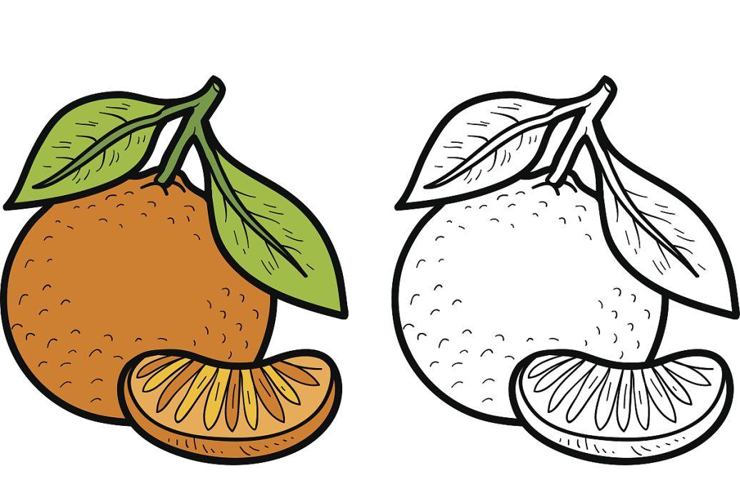 画水果篮里面装水果怎么画画简易的