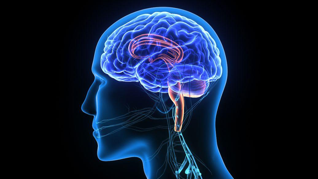 自己如何在快速阅读训练中克服懒惰--速读记忆方法